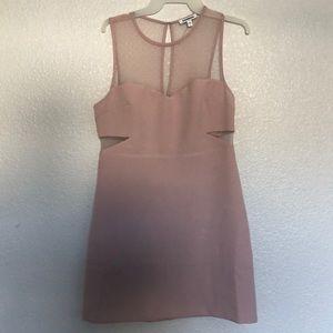 Blush Express Dress